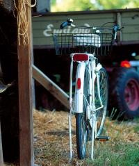 Fahrradfahren im Emsland